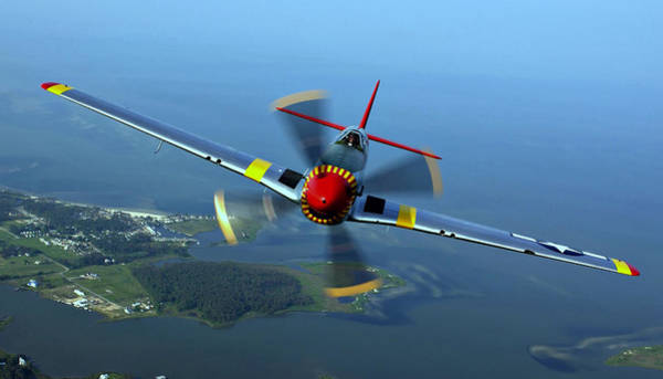 Photograph - P-51 Mustang  by Movie Poster Prints
