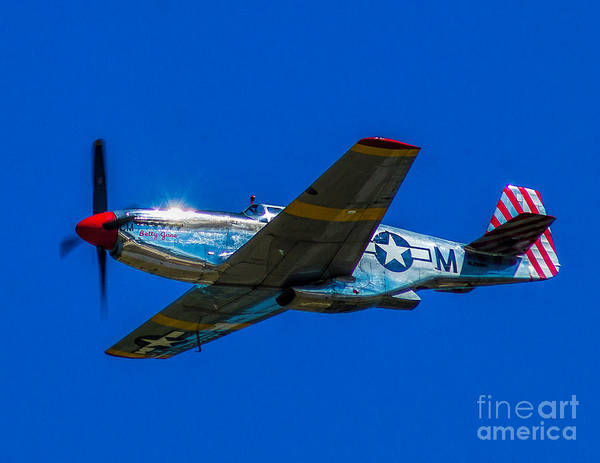 Photograph - P-51 Mustang by Nick Zelinsky