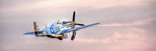 Photograph - P-51 Mustang Taking Off by Don Mercer