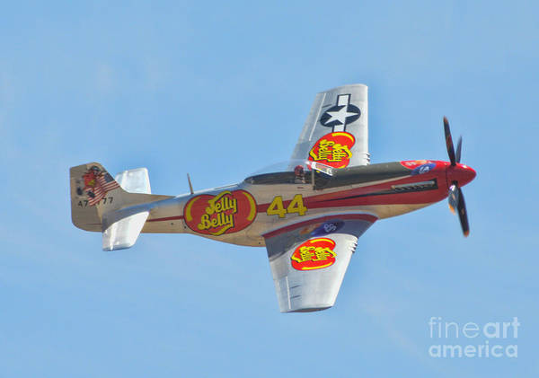 Jelly Belly Photograph - P-51 Mustang by Tommy Anderson