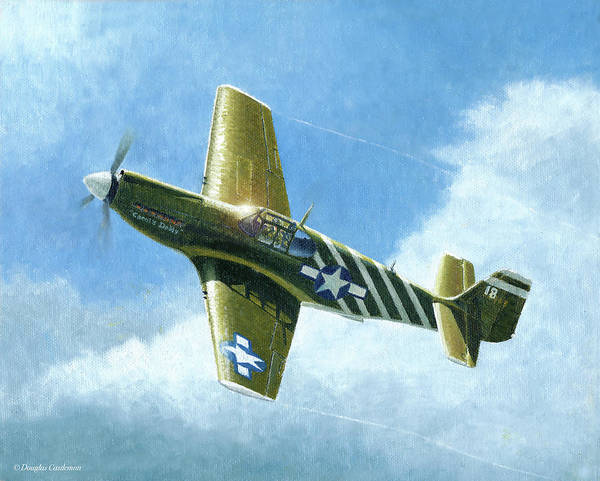 Painting - P-51a Mustang by Douglas Castleman