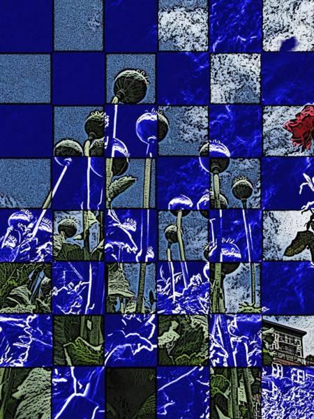 Poppies Digital Art - P Patch Poppies by Tim Allen