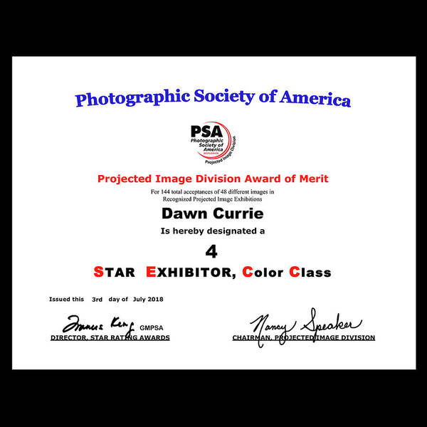Photograph - P S A - P I D C Four Star Exhibitor by Dawn Currie