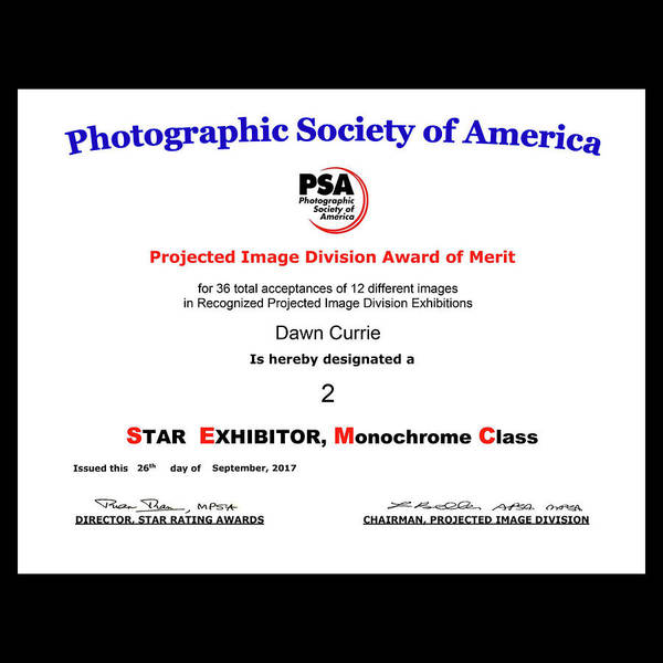 Photograph - P S A - P I D M Two Star Exhibitor by Dawn Currie