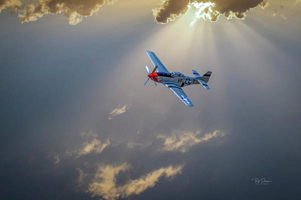 Photograph - P51 Mustang by Bill Posner