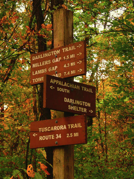 Photograph - Pa At And Other Trails Sign by Raymond Salani III