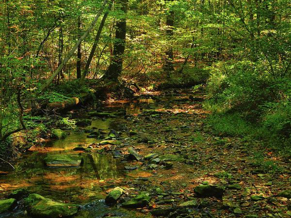 Photograph - Pa At Creek In Early Autumn by Raymond Salani III