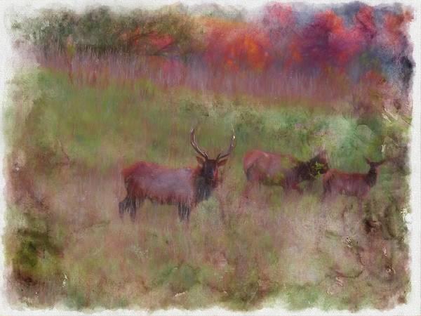 Digital Art - Pa. Elk by Rusty R Smith
