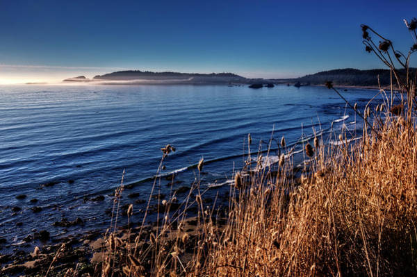 Photograph - Pacific Blues by Debra and Dave Vanderlaan