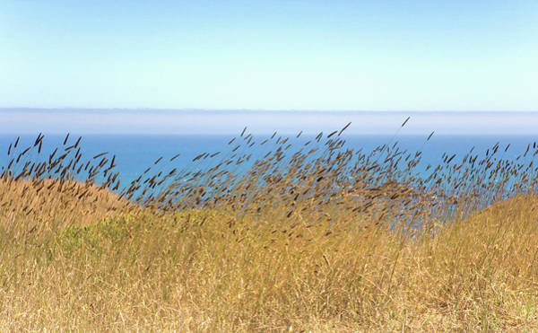 Furon Photograph - Pacific Breeze Sonoma Cliffs by Daniel Furon