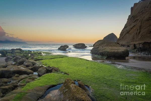 Photograph - Pacific City Beach 3 by Paul Quinn