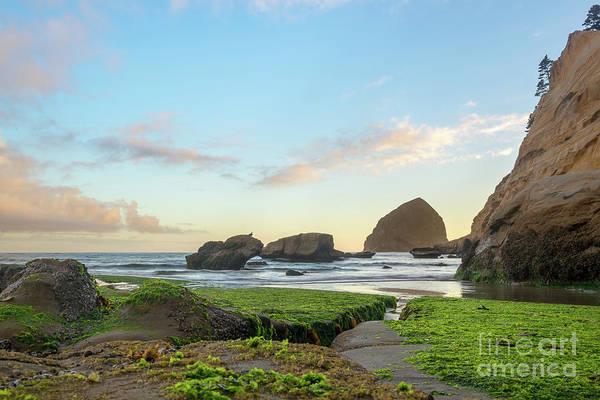 Photograph - Pacific City Beach by Paul Quinn