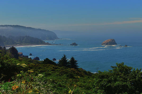 Photograph - Pacific Coast by Greg Norrell