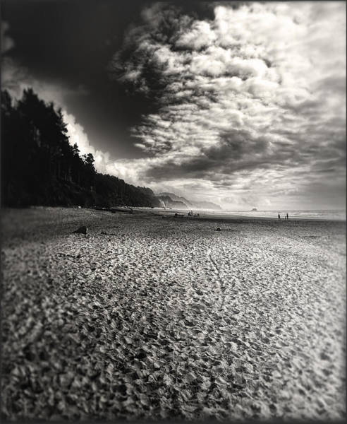 Photograph - Pacific Coast Highway Oregon by Douglas MooreZart