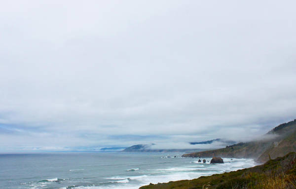 Photograph - Pacific Coast Highway by Susan Vineyard
