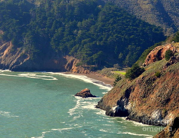 Wall Art - Photograph - Pacific Coast by Meeli Sonn