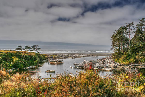 Wall Art - Photograph - Pacific Coast by Rick Mann
