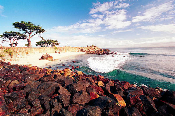 Monterey Bay Photograph - Pacific Grove Bay  by George Oze