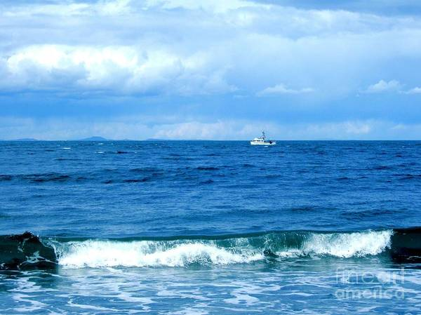 Photograph - Pacific Northwest Blue Seascape  by Delores Malcomson