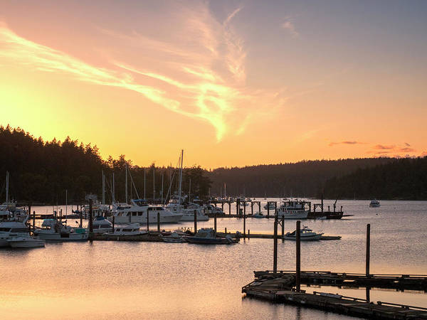 Wall Art - Photograph - Pacific Northwest Marina Sunset by Stephanie McDowell