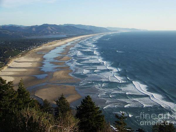 Photograph - Pacific Ocean - Oswald West by Julie Rauscher
