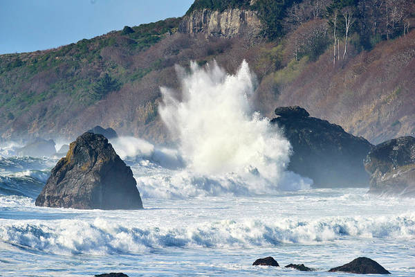 Wall Art - Photograph - Pacific Ocean Waves by Paul Freidlund