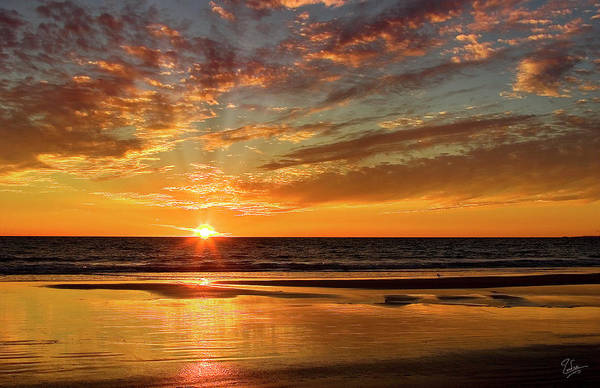Photograph - Pacific Sunset by Endre Balogh
