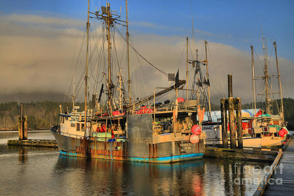 Photograph - Pacific Titan At Dock by Adam Jewell