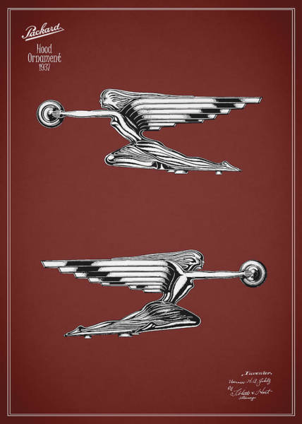 Vintage Hood Ornaments Photograph - Packard Hood Ornament 1937 by Mark Rogan