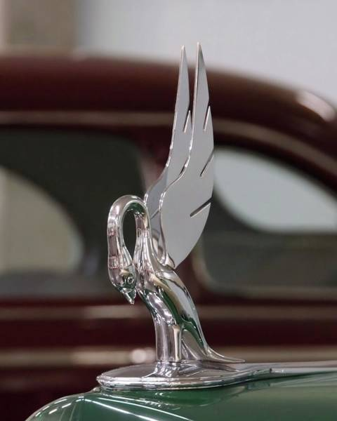 Photograph - Packard Hood Ornament by Patricia Strand