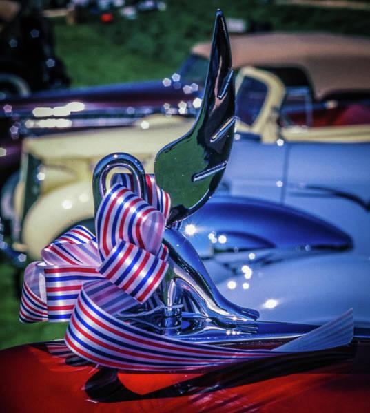 Packard Swan Art Print