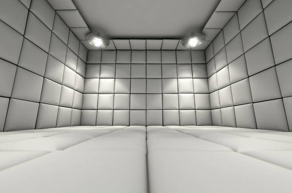 Pads Digital Art - Padded Cell by Allan Swart