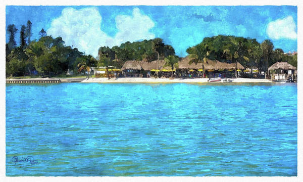 Photograph - Paddle In For Happy Hour by Susan Molnar