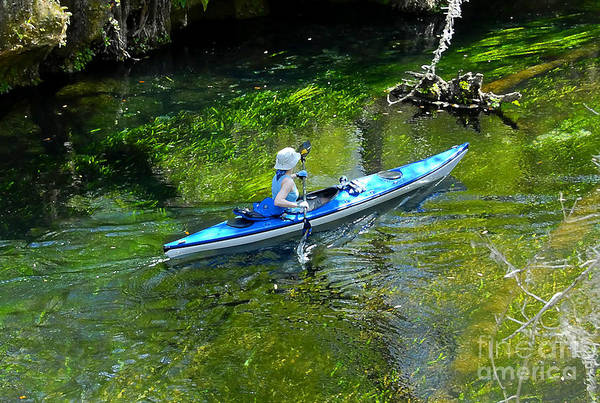 Thompson River Photograph - Paddling The Ichetucknee by David Lee Thompson