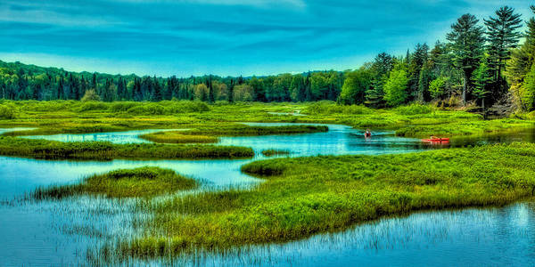 Photograph - Paddling The North Branch Of The Moose River by David Patterson