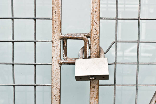 Chain Link Photograph - Padlocked Gate by Tom Gowanlock