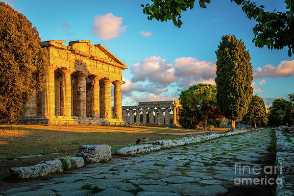 Colonnade Photograph - Paestum Road by Inge Johnsson