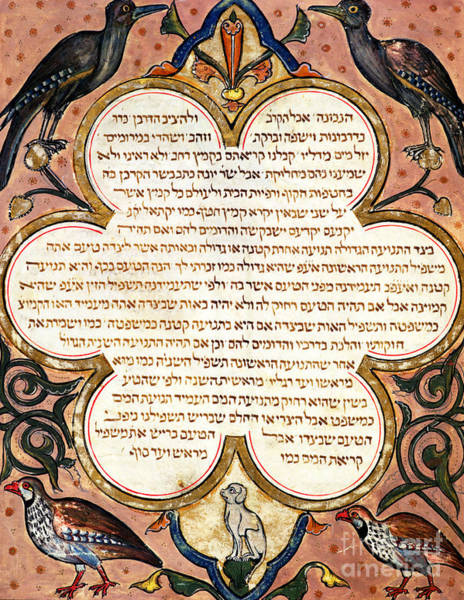 Hebrew Painting - Page From A Hebrew Bible With Birds, 1299  by Joseph Ha-Zarefati