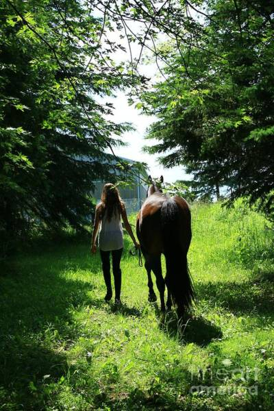 Photograph - Paige-lacey48 by Life With Horses