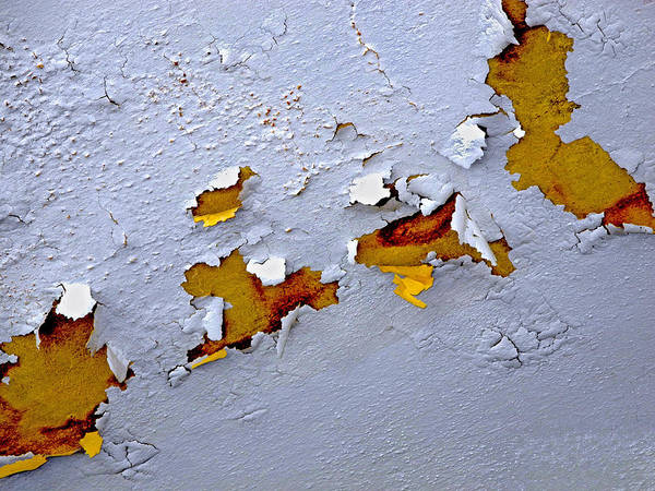 Photograph - Paint Appeal by Lynda Lehmann