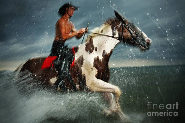 Photograph - Paint Horse Running In The Water by Dimitar Hristov
