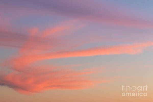 Wall Art - Photograph - Paint It Pink by Ana V Ramirez