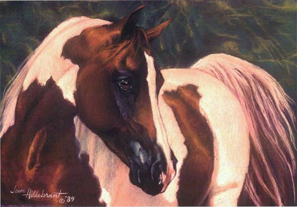 Pastel - Paint by Jean Hildebrant