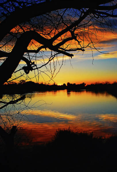 Silhoutte Photograph - Paint The Sky by Saija  Lehtonen