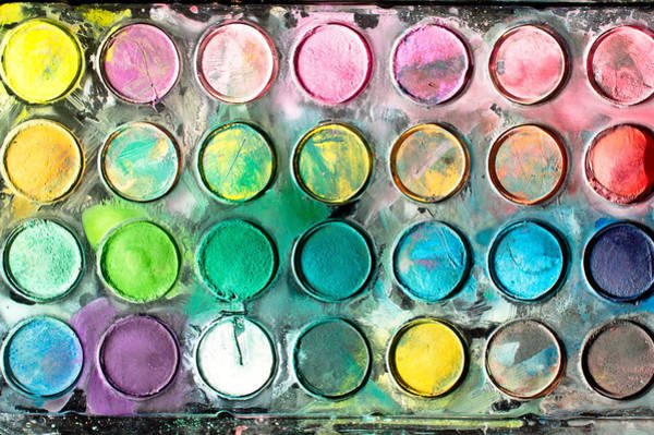 Kindergarten Photograph - Paint Tray by Tom Gowanlock
