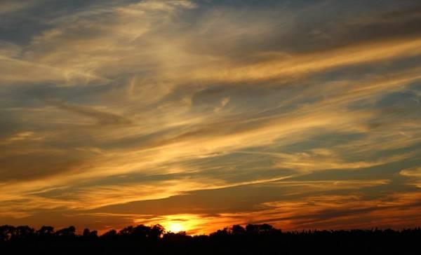 Wall Art - Photograph - Paintbrush Sunset by Weathered Wood