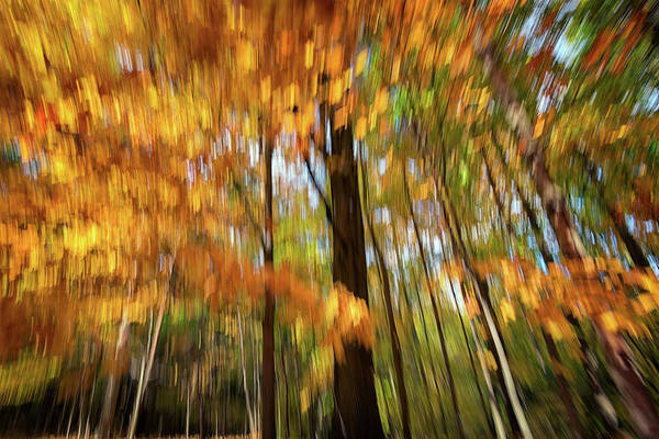 Wall Art - Photograph - Painted Autumn by Rick Berk