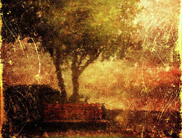 Park Bench Digital Art - Painted Bench by Andrea Barbieri