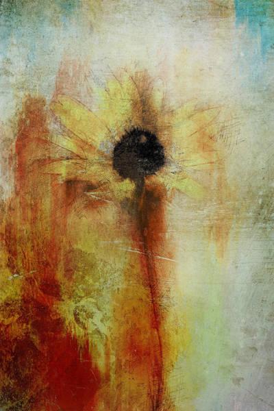 Painting - Painted Black Eyed Susan Wildflower by Christina VanGinkel