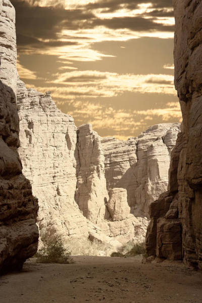 Indio Photograph - Painted Canyon Trail by Linda Dunn